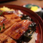 広島郷土料理「酔心」の個室でブロガー二人が仲良く穴子飯をつついてきました(オフ会レポ)