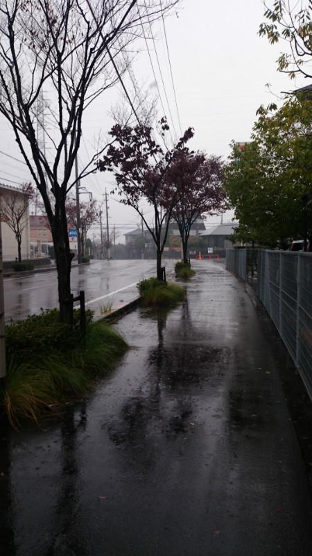 雨の中、病院近くの道を歩く